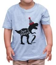 7 ate 9 Apparel Kid's Two Dinosaur Birthday Grey T-Shirt