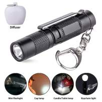 Mini Flashlight Keychain, Small Led flashlights with lampshade and clip, DC Pen light, AAA Battery Included (Black with clip)