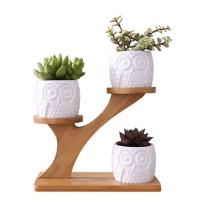 Youfui Owl Succulent Pots with 3 Tier Bamboo Saucers Stand Holder, Flowerpot Planter for Home Office Desk Window Plant Pot with Drainage