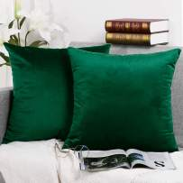 Velvet Decorative Throw Pillow Covers Set Soild Color Cushion Case Square Soft Pillowcase for Couch 16 x 16 inch Pack of 2