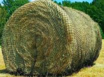 Texas Haynet - Round Bale Hay Net Slow Feed - Durable Round Bale Feeder for Horses