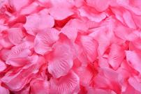 ocharzy 1000pcs Silk Rose Petals Wedding Flower Decoration (Light Rose+red)