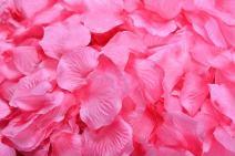 ocharzy 1000pcs Silk Rose Petals Wedding Flower Decoration (Light Rose+red)