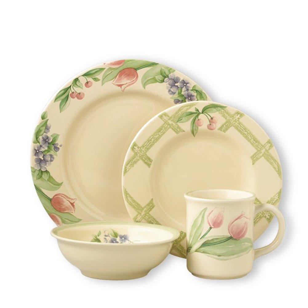 Pfaltzgraff Garden Party Dinnerware Set (16 Piece)