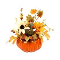 MISBEST Artificial Pumpkin Gourd, Berry Sunflower and Maple Leaf Arrangement,Artificial Vegetables Fruit for Halloween Thanksgiving Autumn Ornaments Orange
