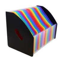 SAYEEC Rainbow Expanding File Holder Folder Standing A4 Vertical Mini File Organizer Magazine Basket Desktop 24 Pockets File Holder with Handle for Students Examination Paper/Bills/Office/Study