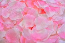 ocharzy 1000pcs Silk Rose Petals Wedding Flower Decoration (Pink+White)