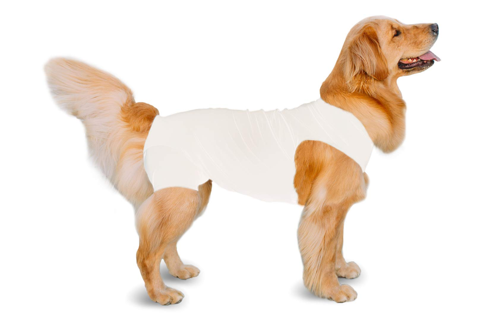 Shed Defender Recovery Dog & Cat Onesie – Seen on Shark Tank, After Surgery Abdominal Wound and Hot Spot Protection Suit, Anti-Licking Medical Cone E-Collar Alternative, Reduce Anxiety, Eco-Friendly