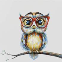 AIMUKILADO DIY 5D Diamond Painting owl Kits for Adults Kids Full Drill owl Diamond Painting Art Painting for Adults Begginner Perfect for Home Wall Decor, 12x12inch