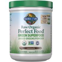 Garden of Life Raw Organic Perfect Food Green Superfood Juiced Greens Powder - Chocolate, 30 Servings (Packaging May Vary) - Non-GMO, Gluten Free, Vegan Whole Food Dietary Supplement, Plus Probiotics, 11.9 Ounce (Pack of 1)