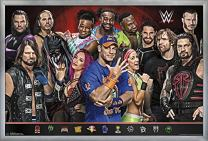 "Trends International WWE - Group 17, 22.375"" x 34"", Silver Framed Version"