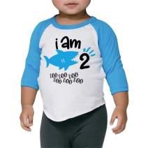 Two Birthday Shark Shirt Boys Second Birthday Shark Outfit
