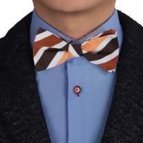 Epoint Men's Fashion Striped Bow Ties Silk Self-tied Bow Tie