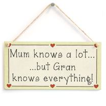 """Meijiafei Mum Knows a lot but Gran Knows Everything Love Heart Frame Sign 10""""x5"""""""