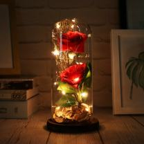 MISBEST Beauty and The Beast Rose, Enchanted Rose Artificial Silk Rose Flower in Glass Dome with LED Light Wooden Base for Wedding Anniversary Birthday Gift (Red Rose Beauty)