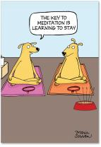 Dog Meditation - Funny Dog Cartoon Happy Birthday Card with Envelope (4.63 x 6.75 Inch) - Zen Animal Yoga, Hilarious Celebratory Notecard - Bday Congratulations Greeting Stationery, Gift 9670
