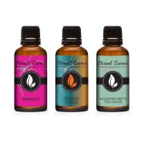 30ML - Trio (3) - Mermaid, Seaside Citrus & Mountain Meets Ocean - Premium Fragrance Oil Trio - 30ML