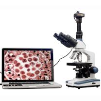 AmScope T120B-3M Digital Professional Siedentopf Trinocular Compound Microscope, 40X-2000X Magnification, WF10x and WF20x Eyepieces, Brightfield, LED Illumination, Abbe Condenser with Iris Diaphragm, Double-Layer Mechanical Stage, 100-240VAC, Includes 3MP Camera with Reduction Lens and Software