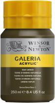 Winsor & Newton Galeria Acrylic Paint, 250ml Bottle, Raw Umber
