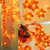 ANYOYO LED Maple Leaf String Lights,9.8 Feet 20 LED Battery Powered Harvest Fall Maple Leaf String Lights, Waterproof Orange Fall Garland Lights Decor for Party Indoor Outdoor Thanksgiving-Warm White