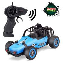 BGdoyz Remote Control Car, RC Cars for Kids 2.4GHz Race Vehicle 1/20 Electric Sport Racing Hobby Toy Car Dual Motors Rechargeable Xmas Gifts for Boys Girls Adults (Blue)