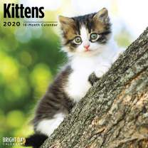 2020 Kittens Wall Calendar by Bright Day, 16 Month 12 x 12 Inch, Cute Cat Kitty Animals Feline