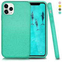 Biodegradable iPhone 11 Pro Max Phone Case,Eco-Friendly,Durable and Slim,6.5 Inches (Kelly Green)