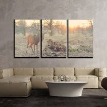 """wall26 - 3 Piece Canvas Wall Art - Buck with Big Antlers in The Wild - Modern Home Decor Stretched and Framed Ready to Hang - 16""""x24""""x3 Panels"""