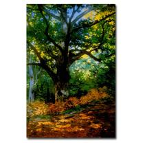 Bodmer Oak Fontainebleau Forest Artwork by Claude Monet, 14 by 19-Inch Canvas Wall Art