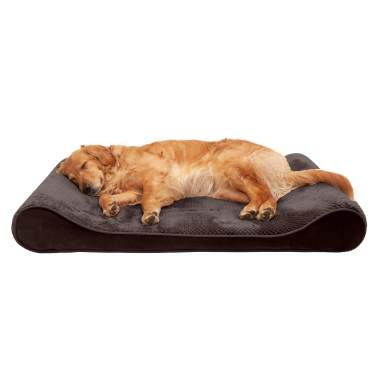 Sizes Mold /& Mildew Resistant Elevated Mesh Dog Bed Cot for Dogs /& Cats Furhaven Pet Multiple Styles /& Colors Orthopedic Living Room Sofa-Style Couch