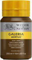 Winsor & Newton Galeria Acrylic Paint, 250ml Bottle, Burnt Umber