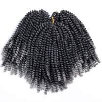 2 Pack Spring Twist Crochet Braids Bomb Twist Crochet Hair Ombre Gray Synthetic Braiding Hair Extensions 8inch 110g(1b/grey#)