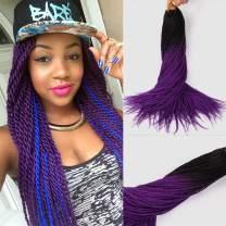 Feelgrace Ombre Two Tone Twist Braids Crochet Hair Colorful Senegalese Twist Crochet Hair 24Inch 20Roots/Pcs 3Packs Thin Senegalese Small Twist Braids Hairstyles (1B/Purple)