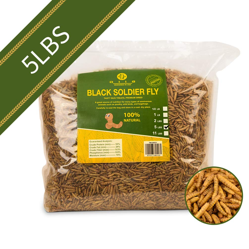 diig Non-GMO Dried Mealworms/Crickets/Black Soldier Fly - Treats for Birds Chickens Hedgehog Hamster Fish Reptile Turtles (5 lb, Black Soldier Fly)