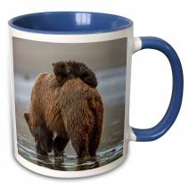3dRose Bear and Cubs Two Tone Mug, 11 oz, Blue/Brown