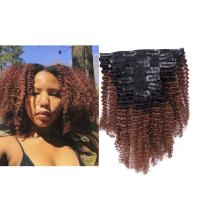 Lacerhair Ombre Clip in Human Hair Extensions 4B 4C Afro Kinky Curly Clip in Highlighted Hair Extensions Clip on 16 inch 100% Real Remy Natural Hair Quality Color #1B/33 AC for Black Women