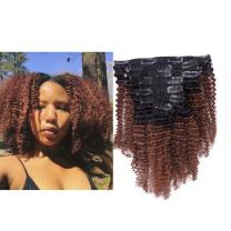 Ombre Remy Clip in Human Hair Extensions Afro Kinky Curly 4B 4C 100% Natural Black Hair Extensions 10-22 inch Two Tone T#1B/33 Natural to Auturn Full Head (12 inch, Ombre #1B/33 AC)