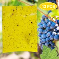 TOOVREN 12 Pack Dual-Sided Yellow Sticky Gnat Traps for Indoor/Outdoor Flying Plant Insect Like Fungus Gnats, Whiteflies, Aphids, Leaf Miners, Thrips, Other Flying Plant Insects - 6x10 Inches