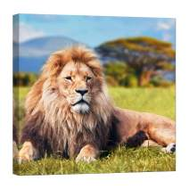 Wall Art for Living Room - Glow in The Dark Canvas Painting - Stretched and Framed Giclee Print - Lion Safari Travel Africa Savannah - Wall Decorations for Bedroom - 32 x 32 inch