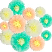 Paper Flowers Decorations,12 Pcs Tissue Paper Flower DIY Crafting for Wedding Backdrop Nursery Wall Baby Shower Decoration,Mint