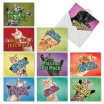 10 Assorted 'Cat Miss You This Much' Note Cards with Envelopes 4 x 5.12 inch - Blank Greeting Cards with Adorable Cats Stretching Paws - Animal Stationery for Kids, Adults M6599MYB