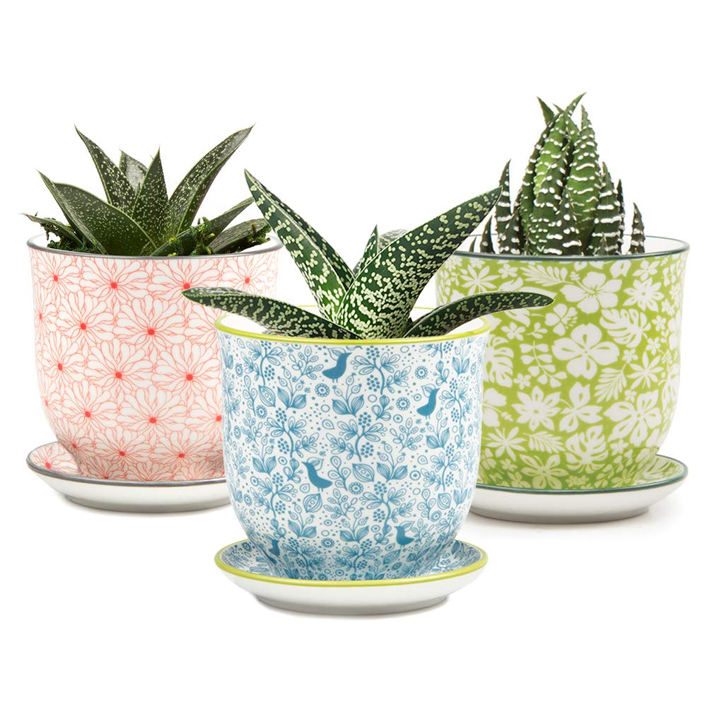 Chive - Set of 3 Liberte, Small Succulent and Cactus Pot and Saucer, 3 Inch Flower and Plant Container with Drainage Hole/Saucer, Mini Pot for Indoor/Outdoor Garden Decor, Bulk Blue, Red (Mix 5)