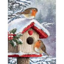 5D Diamond Painting Christmas Cottage Bird Full Drill by Number Kits for Adults, SKRYUIE DIY Rhinestone Pasted Paint with Diamond Set Arts Craft Decorations (12x16inch)
