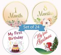 Baby Milestone Monthly Stickers Flowers and Cartoon Designs by Serene Selection, 24 Premium Stickers, 12 Months, Holidays and Achievements, Baby Shower Gift
