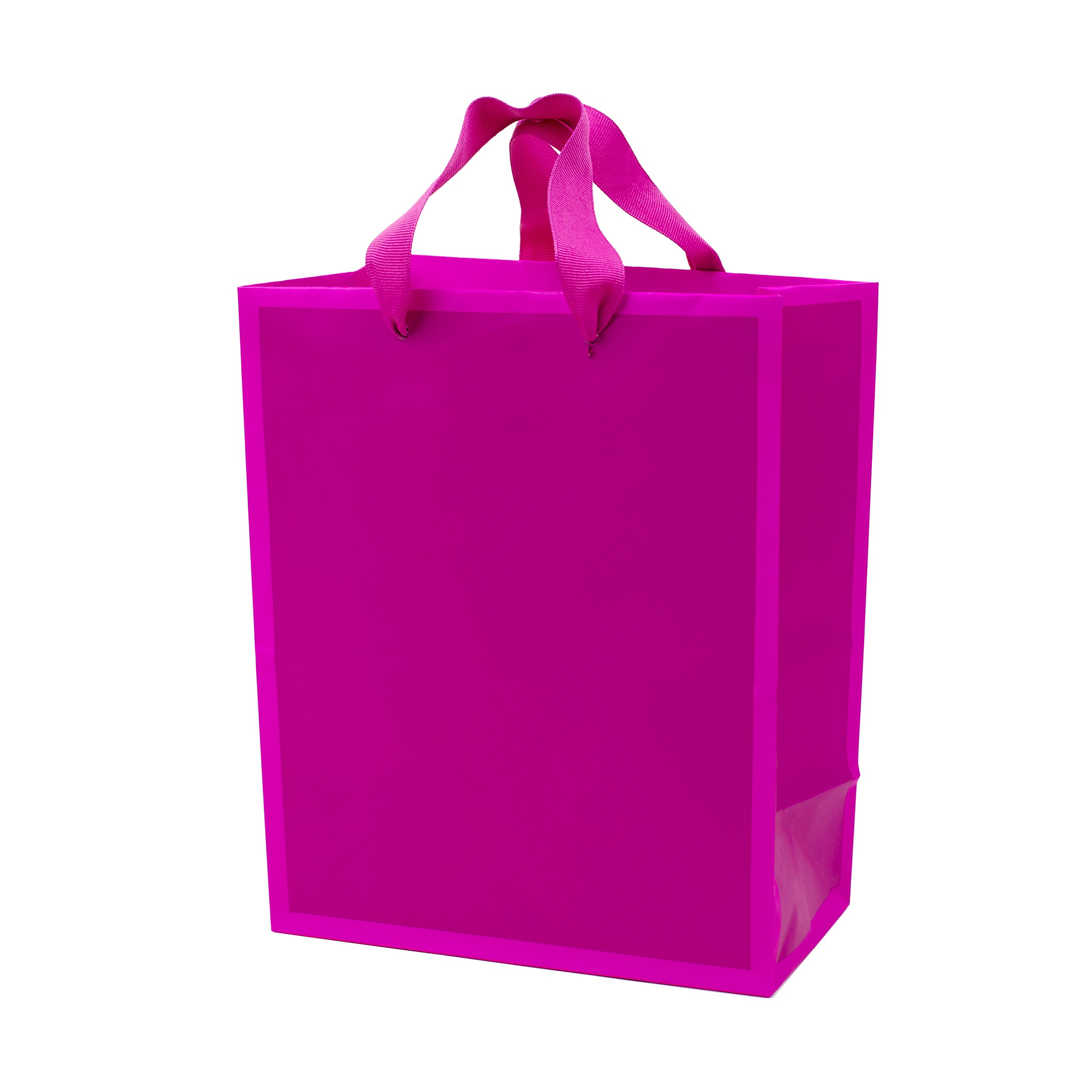 """Hallmark 9"""" Medium Gift Bag (Hot Pink) for Birthdays, Baby Showers, Bridal Showers, Easter, Mothers Day or Any Occasion"""