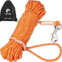 Taglory Check Cord/Tie Out, Long Leash for Dog Training, 15/30/50 FT Nylon Rope with Reflective Stitching for Small Dogs, Great for Swimming, Walking, Camping, Orange