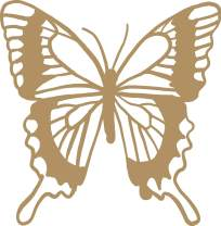 Butterfly Vinyl Decal - 8 Inches - For Cars, Trucks, Windows, Laptops, Tablets, Outdoor-Grade 2.5mil Thick Vinyl - Gold