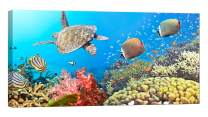 LightFairy Wall Art for Living Room - Glow in The Dark Canvas Painting - Stretched and Framed Giclee Print - Panorama Underwater Turtle Reef Coral - Wall Decorations for Bedroom - 32 x 16 inch