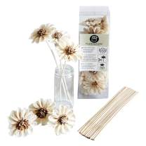 DIY 12 White Sunflower Sola Wood Flower with Reed Diffuser Stick for Home Fragrance Aroma Oil by Plawanature