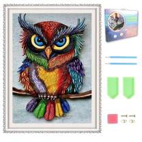 Vigeiya 5D Diamond Painting Kit with Wooden Frame Canvas for Adults Kids Full Drill Art Craft for Home Wall Decor 12x16in (Owl)